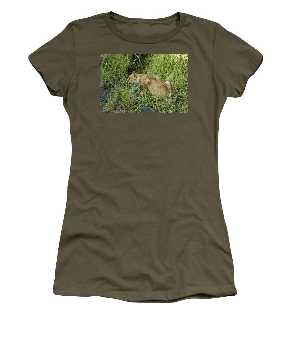 Africa Women's T-Shirt featuring the photograph Lion In A Cool Glade by Michele Burgess