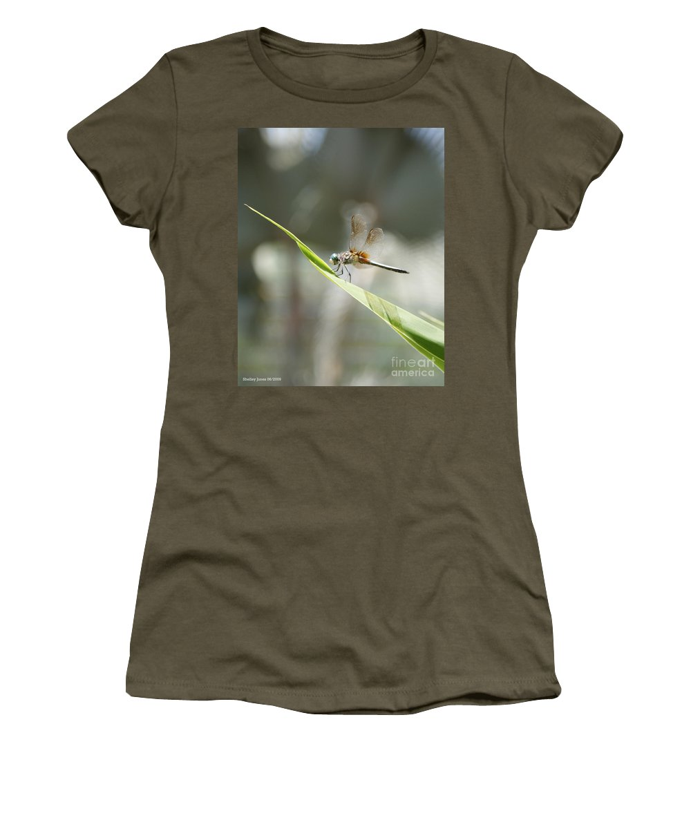 Dragonfly Women's T-Shirt featuring the photograph Little Dragon by Shelley Jones
