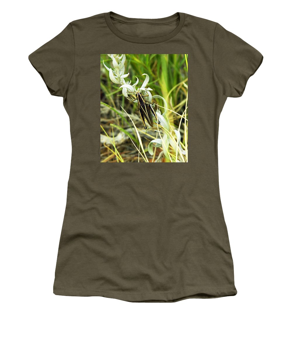 Grasshopper Women's T-Shirt (Athletic Fit) featuring the photograph Little Grasshopper by Marilyn Hunt