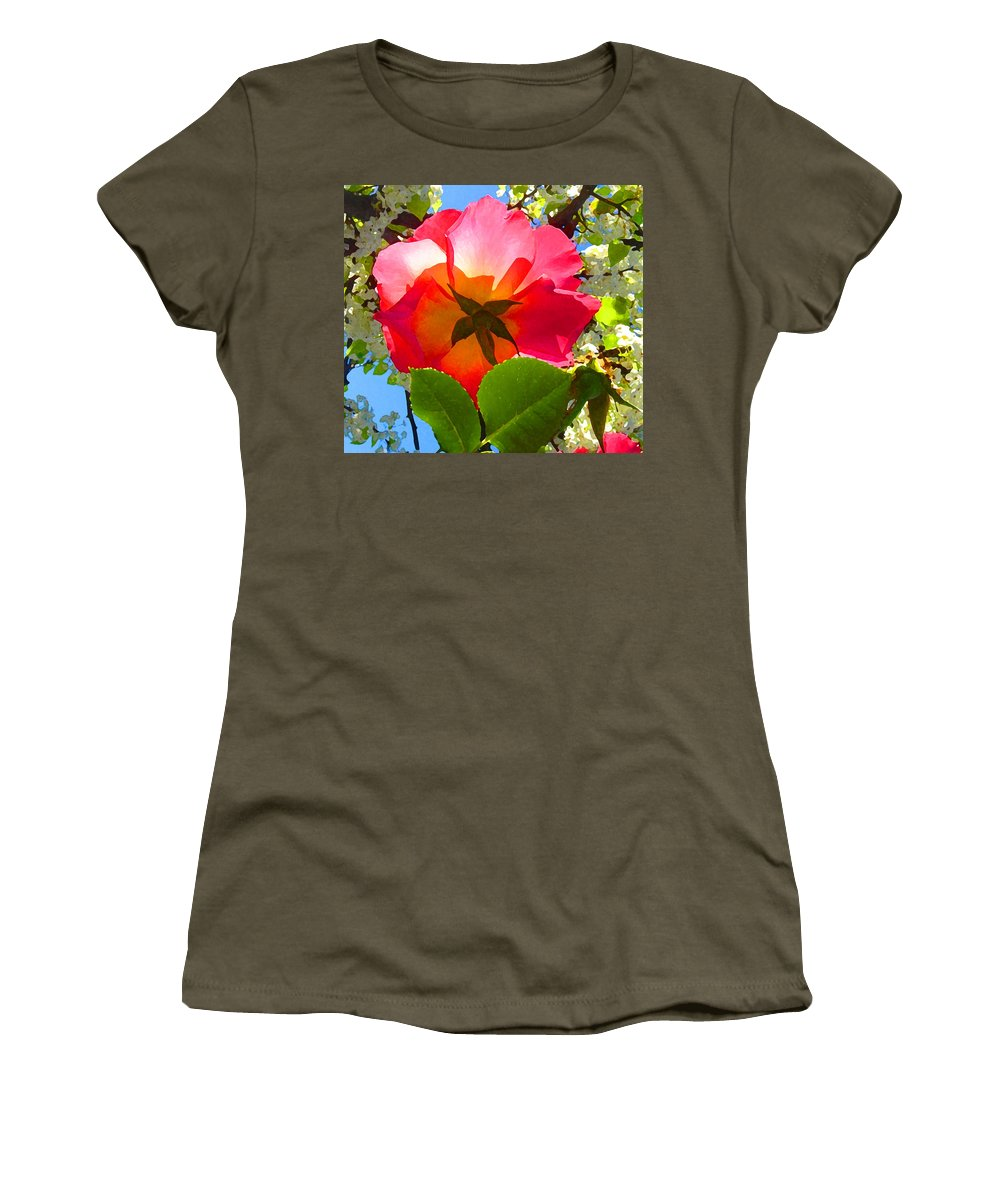 Roses Women's T-Shirt (Athletic Fit) featuring the photograph Looking Up At Rose And Tree by Amy Vangsgard