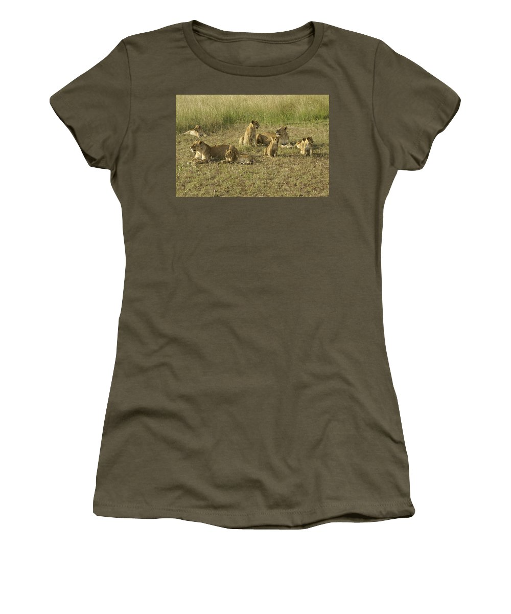 Africa Women's T-Shirt featuring the photograph Lotsa Lions by Michele Burgess