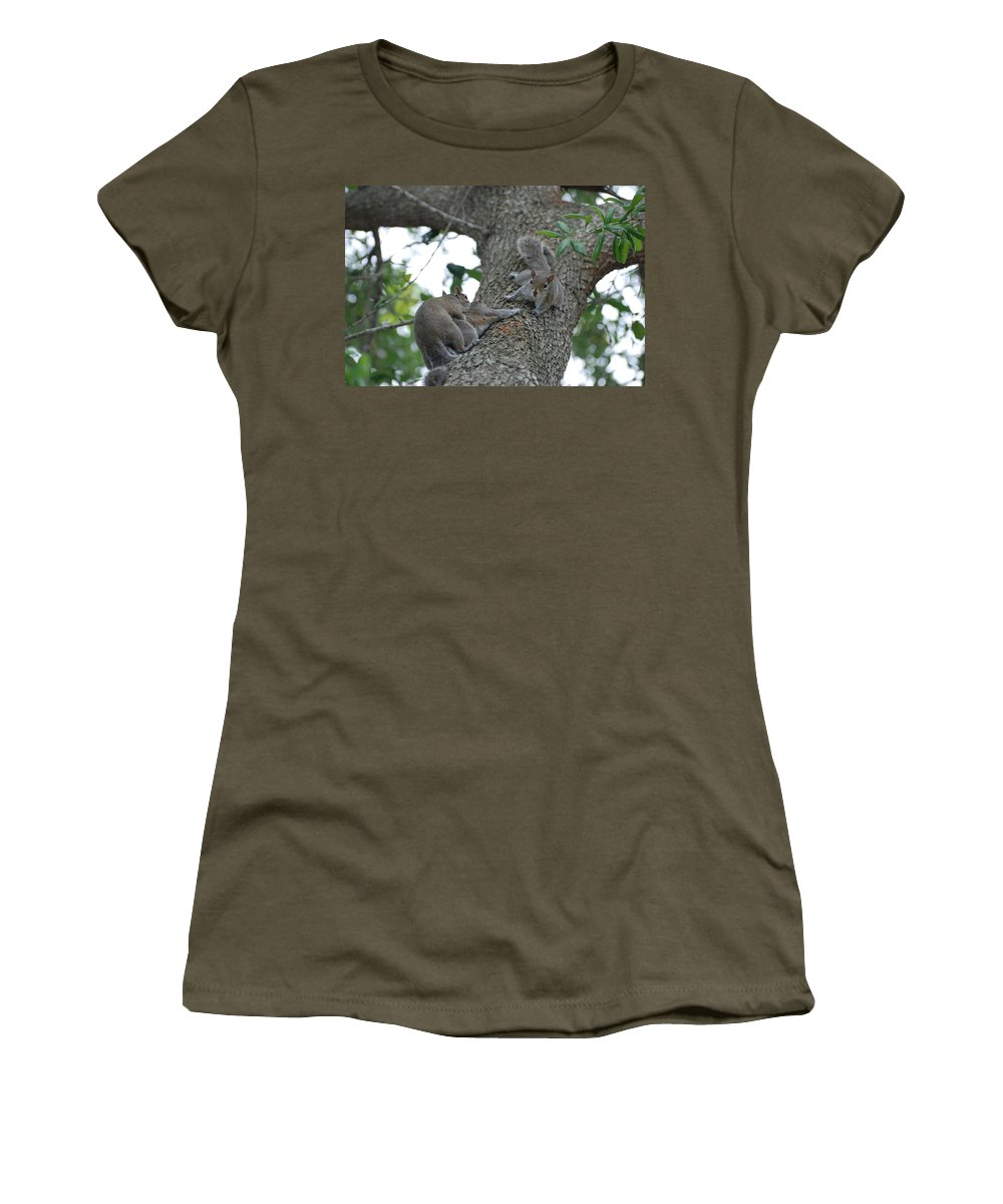 Squirrel Women's T-Shirt (Athletic Fit) featuring the photograph Luck Be A Lady by Rob Hans
