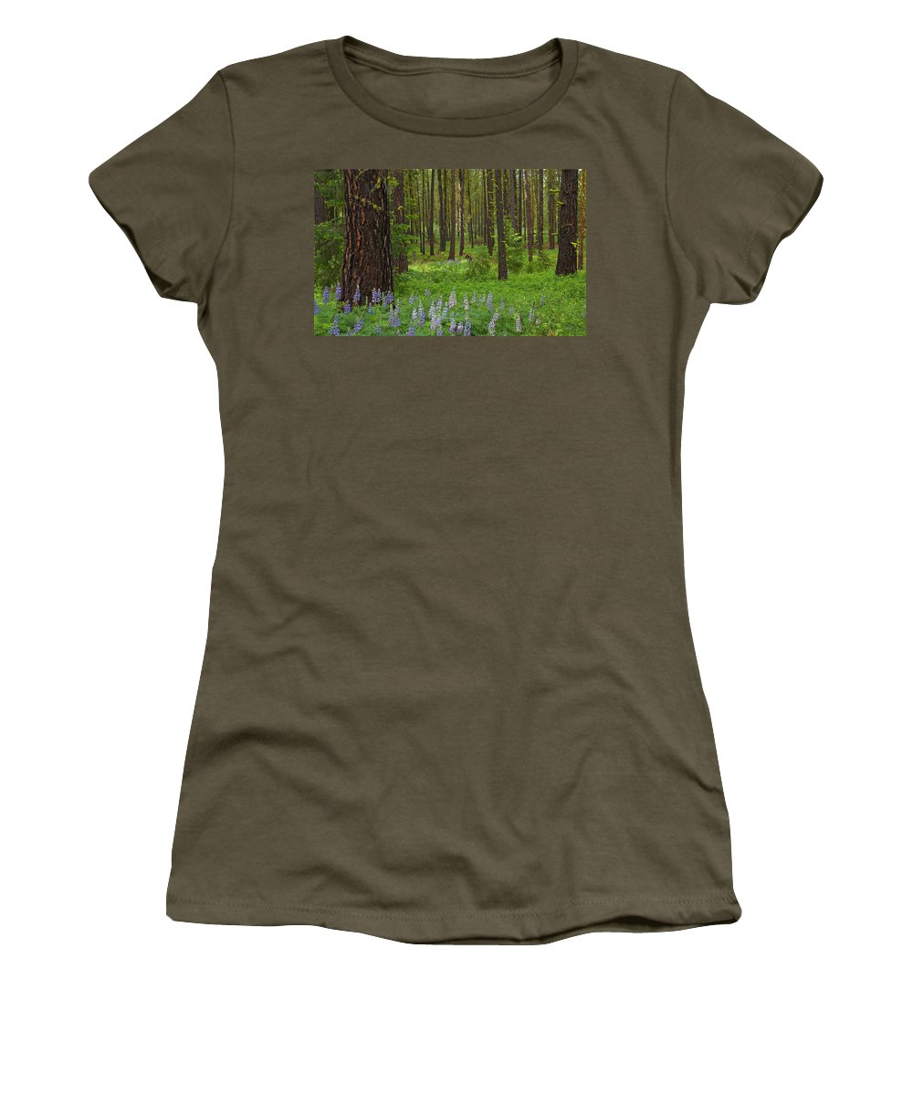 Forest Women's T-Shirt (Athletic Fit) featuring the photograph Lupine Carpet by Mike Dawson