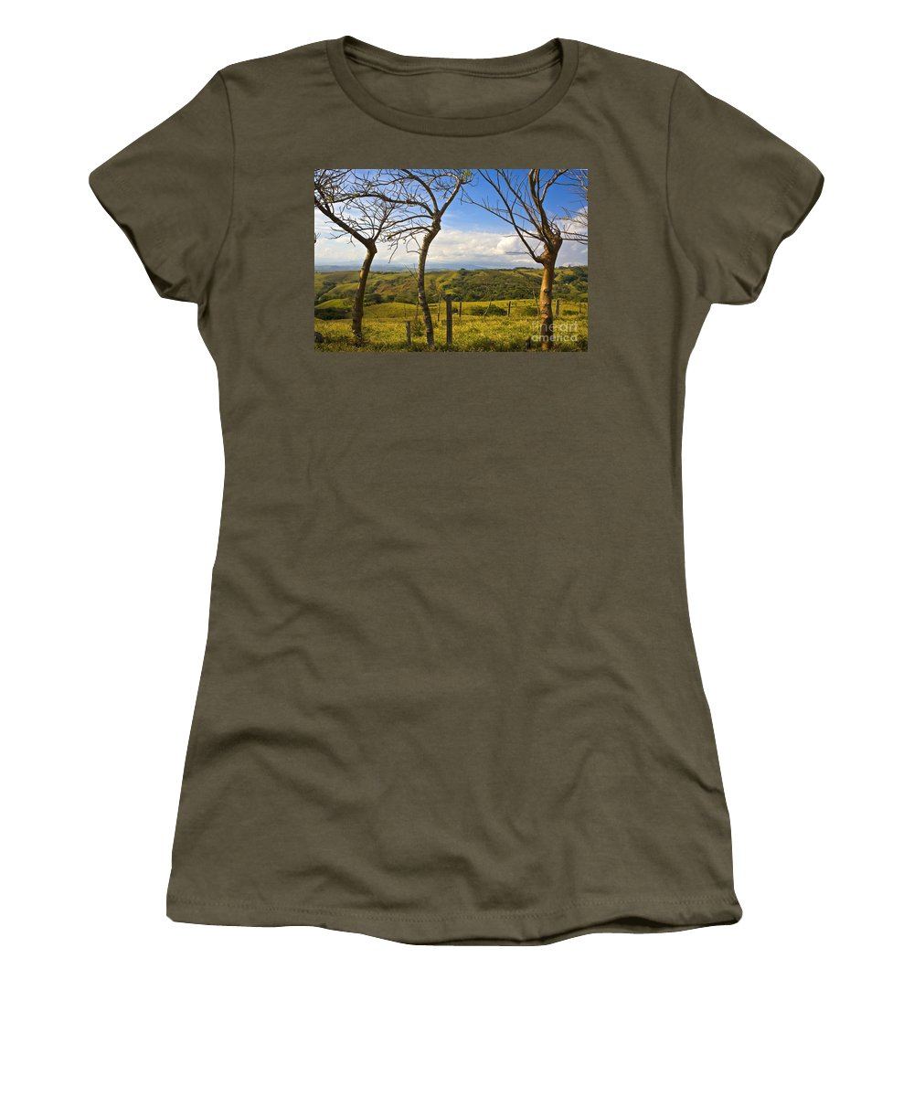 Tree Women's T-Shirt featuring the photograph Lush Land Leafless Trees I by Madeline Ellis