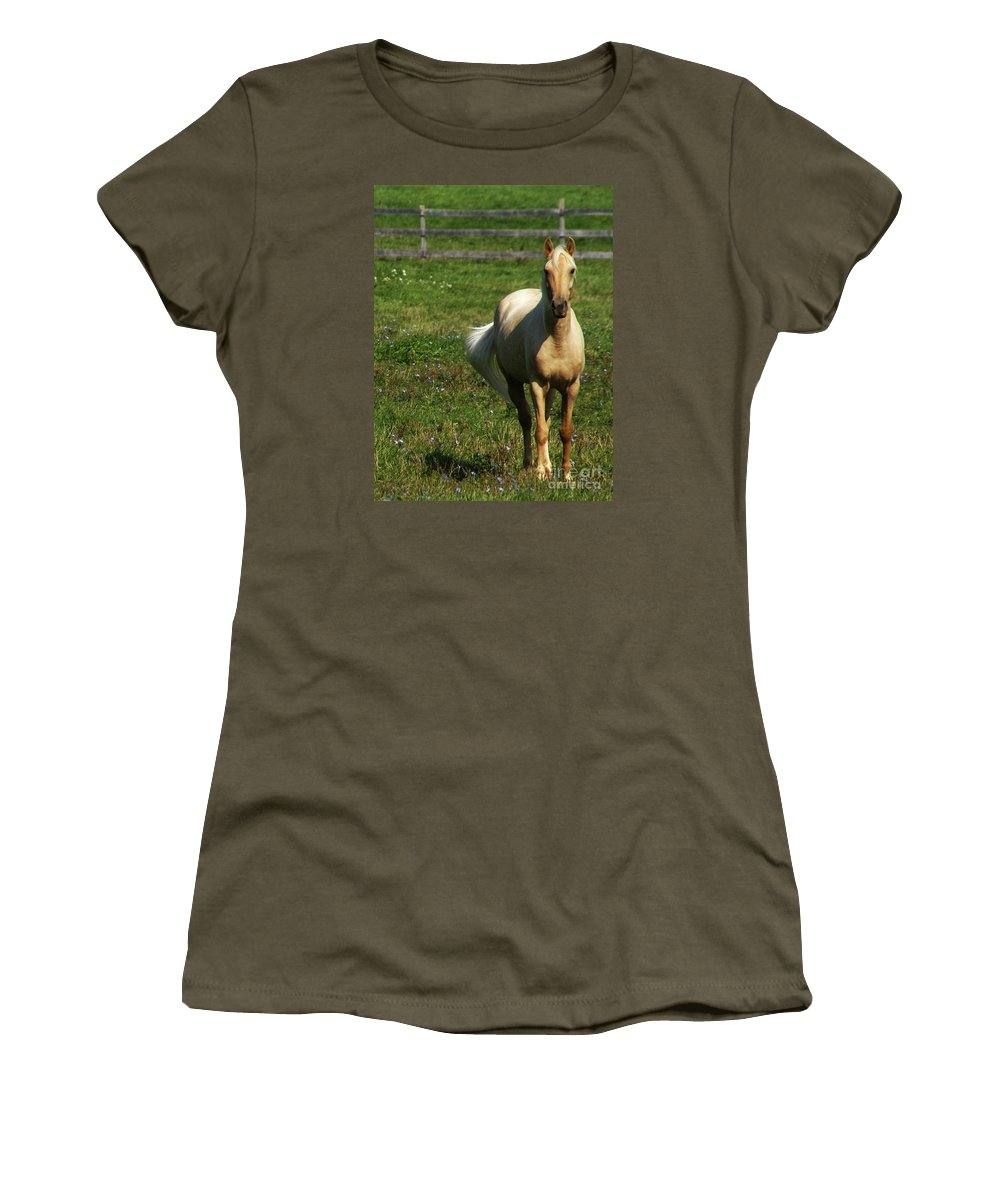 Horse Women's T-Shirt featuring the photograph Maggie - Michigans Morning Breeze by Linda Shafer