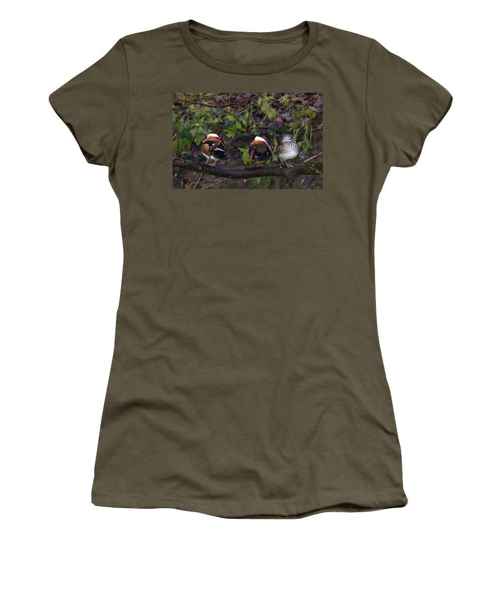 Mandarin Ducks Women's T-Shirt featuring the photograph Mandarin Ducks by Bob Kemp