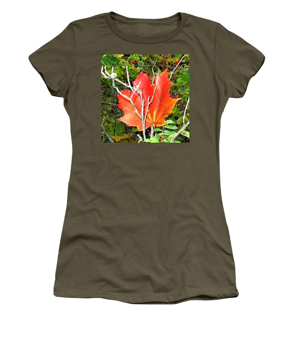 Autumn Women's T-Shirt featuring the photograph Maple Mania 6 by Will Borden