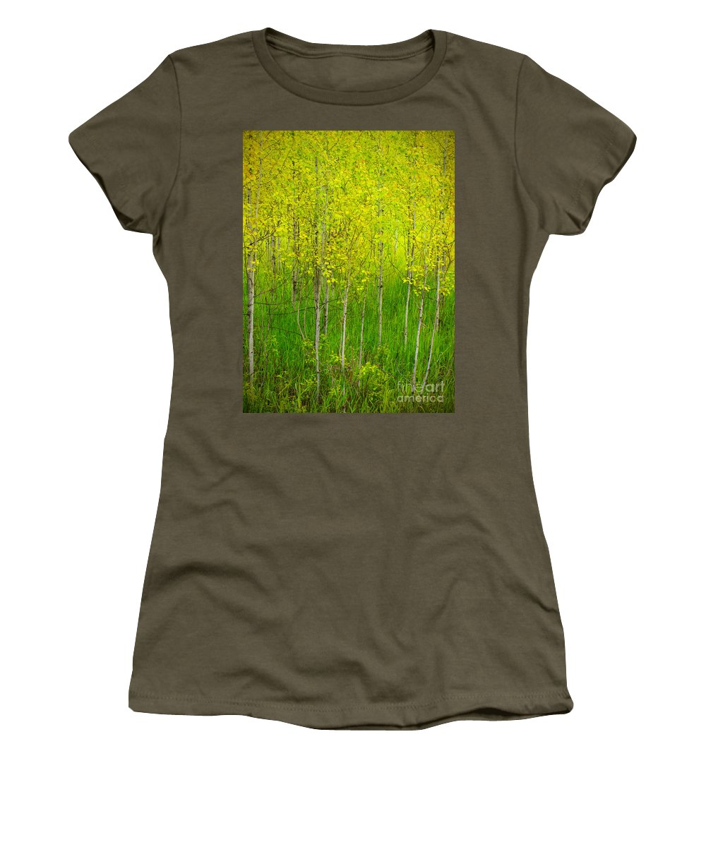 Trees Women's T-Shirt (Athletic Fit) featuring the photograph May 25 2010 by Tara Turner