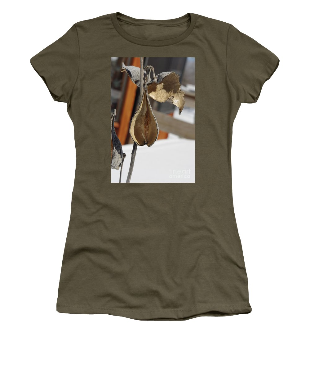Milk Weed Pod Women's T-Shirt (Athletic Fit) featuring the photograph Milk Weed Pod by Alice Markham