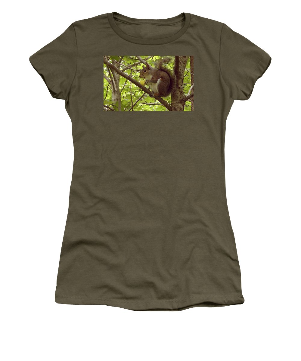 Squirrel Women's T-Shirt (Athletic Fit) featuring the photograph Mmmmm Good by Mary Rogers
