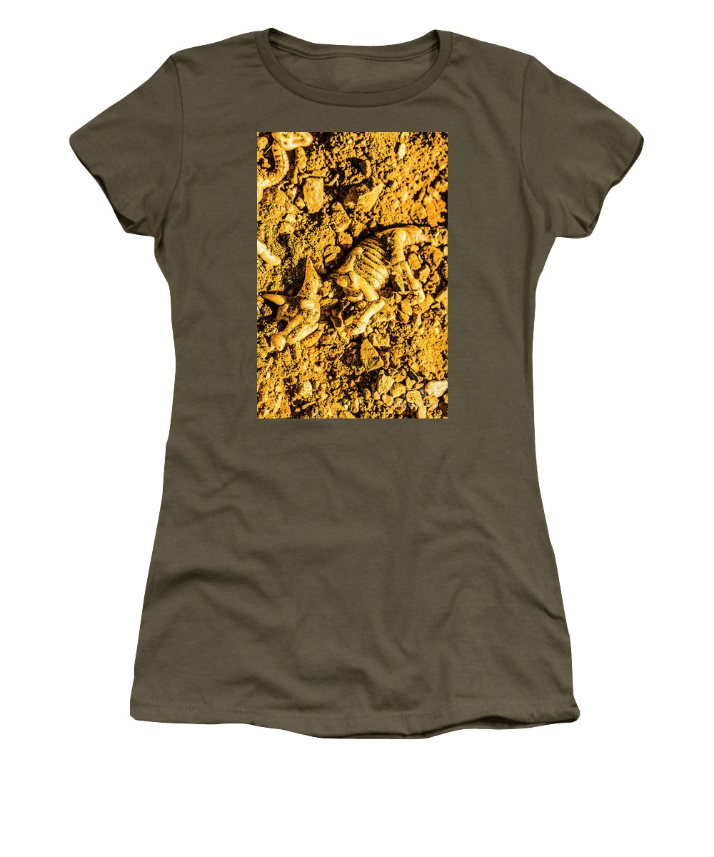 Triceratops Women's T-Shirt featuring the photograph Modelling A Triceratops Fossilised Recovery by Jorgo Photography - Wall Art Gallery