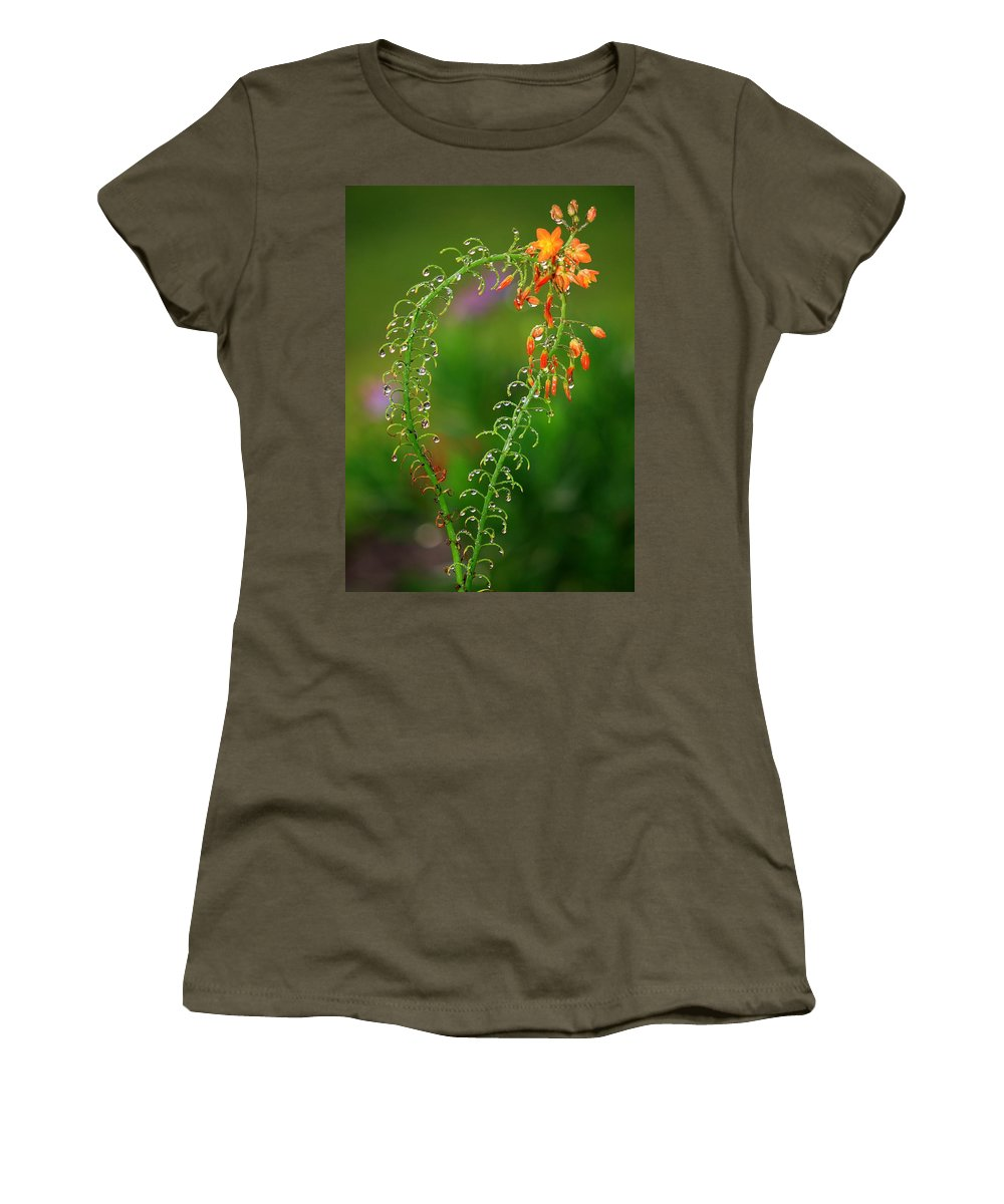 Flowers Women's T-Shirt (Athletic Fit) featuring the photograph Morning Dew On Orange Flowers by Carol Groenen