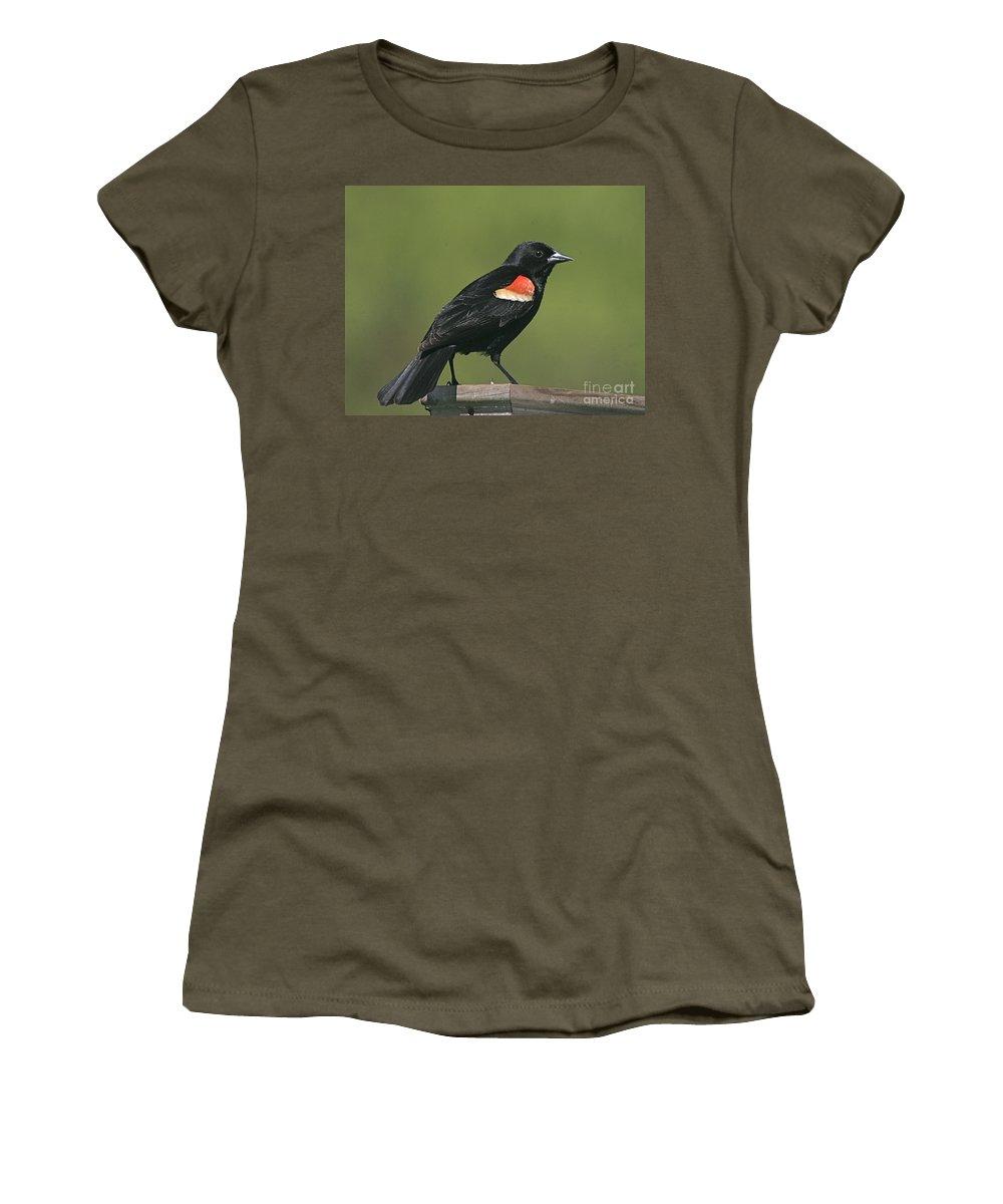Bird Women's T-Shirt (Athletic Fit) featuring the photograph Mr Blck Bird by Robert Pearson