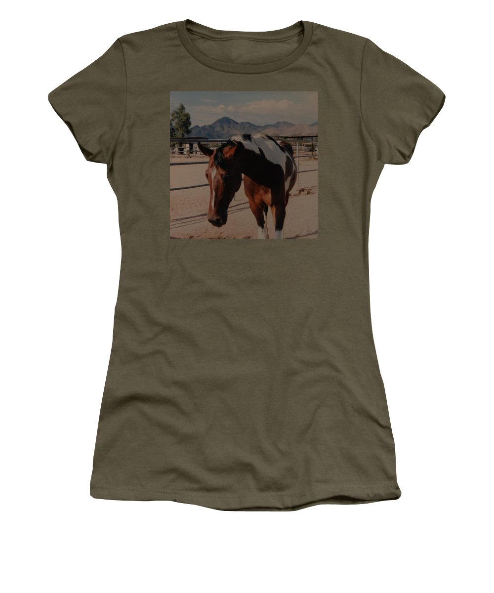 Horse Women's T-Shirt (Athletic Fit) featuring the photograph Mr Ed by Rob Hans