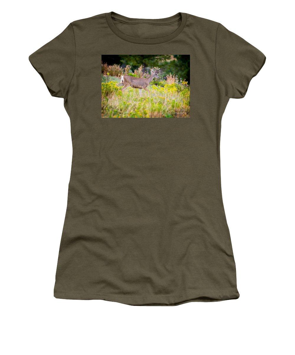 Mule Deer Women's T-Shirt (Athletic Fit) featuring the photograph Mule Deer by Matt Suess