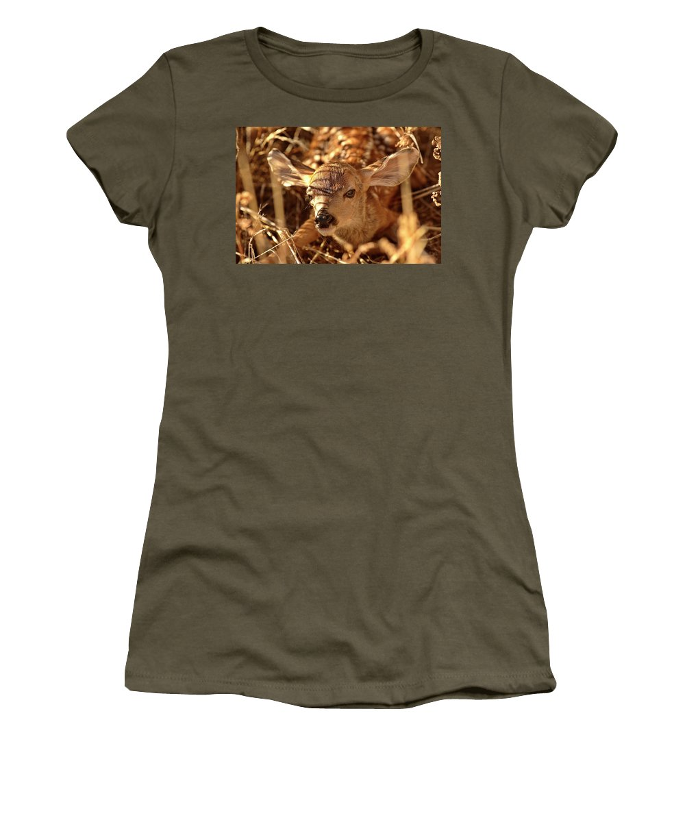 New Women's T-Shirt featuring the digital art Newly Born Fawn Hiding In A Saskatchewan Field by Mark Duffy
