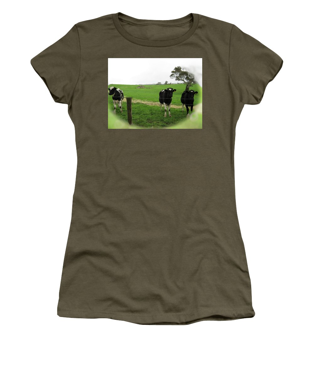 Cows Women's T-Shirt featuring the photograph N'gombe by Douglas Barnard