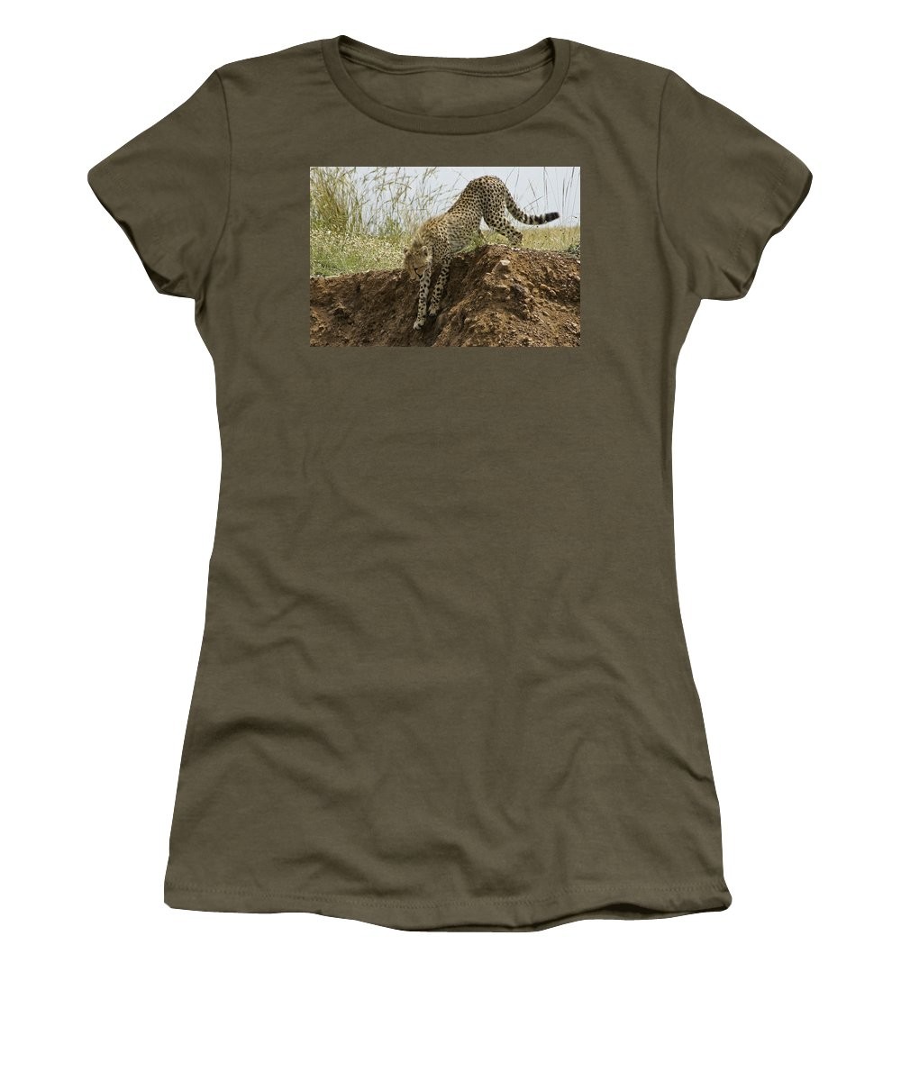 Africa Women's T-Shirt featuring the photograph Not As Easy As It Looks by Michele Burgess