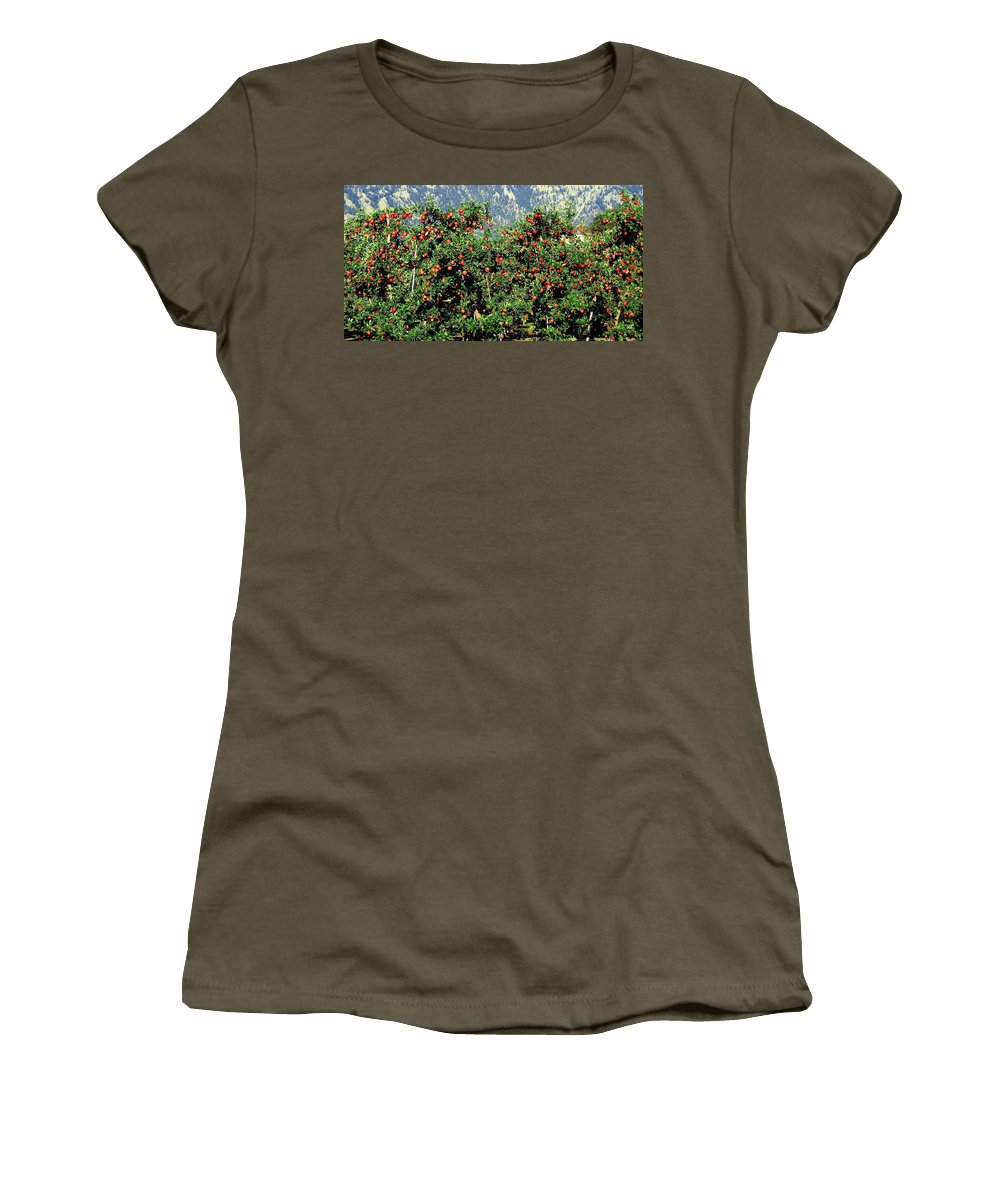 Apples Women's T-Shirt featuring the photograph Okanagan Valley Apples by Will Borden