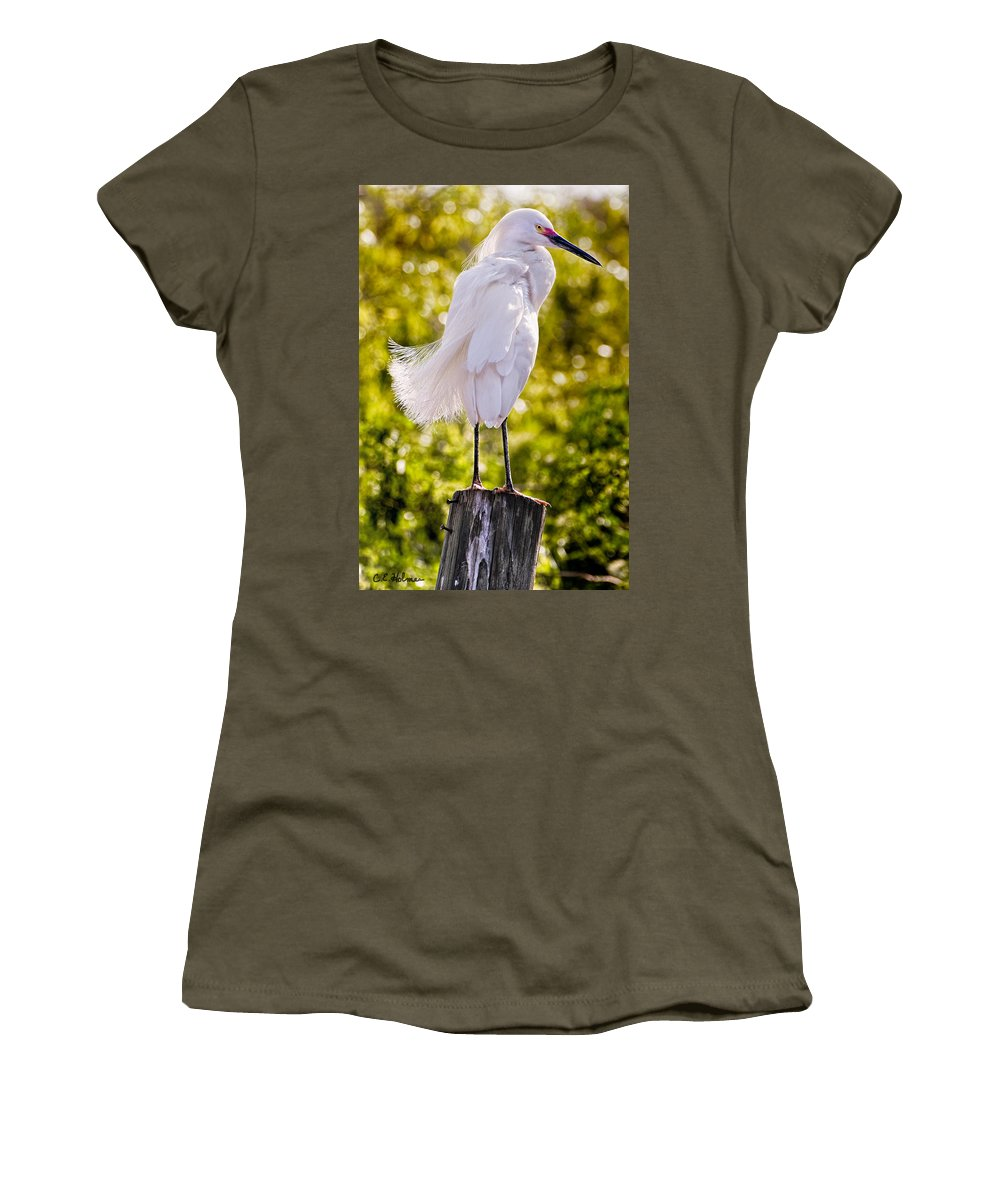 snowy Egret Women's T-Shirt (Athletic Fit) featuring the photograph On Watch by Christopher Holmes