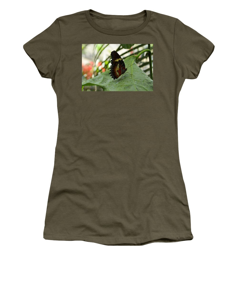 Flower Women's T-Shirt featuring the photograph Orange Black Butterfly by Wendy Fox