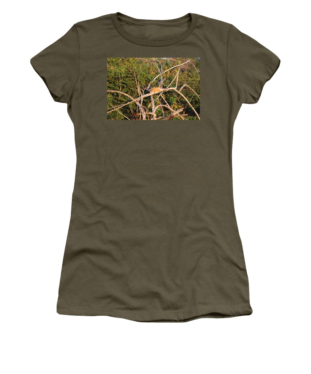 Wood Women's T-Shirt featuring the photograph Orange Iguana by Rob Hans