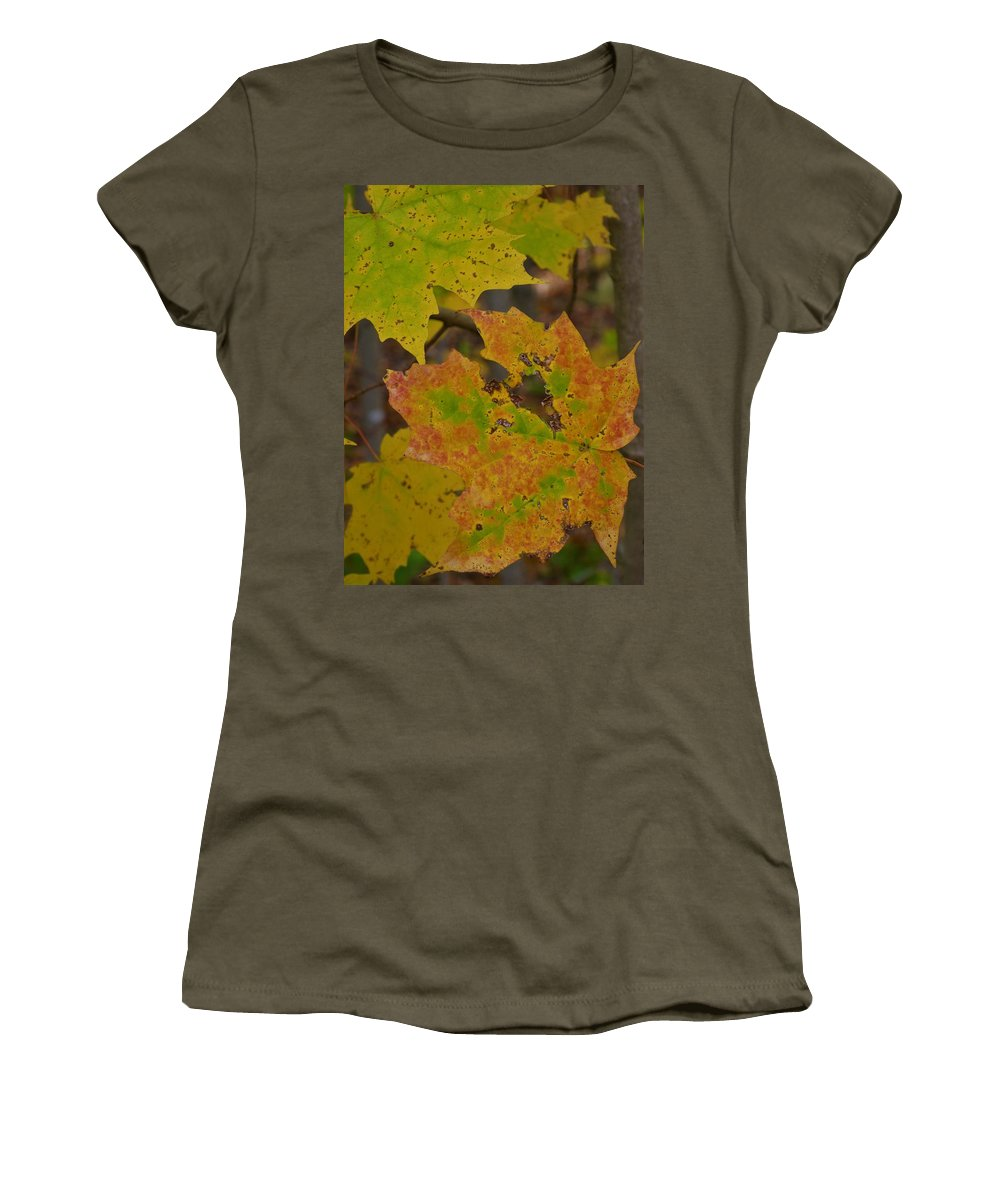 Spencer Gorge Ontario Autumn Leaves Yellow Orange Women's T-Shirt featuring the photograph Patchwork by The Sangsters