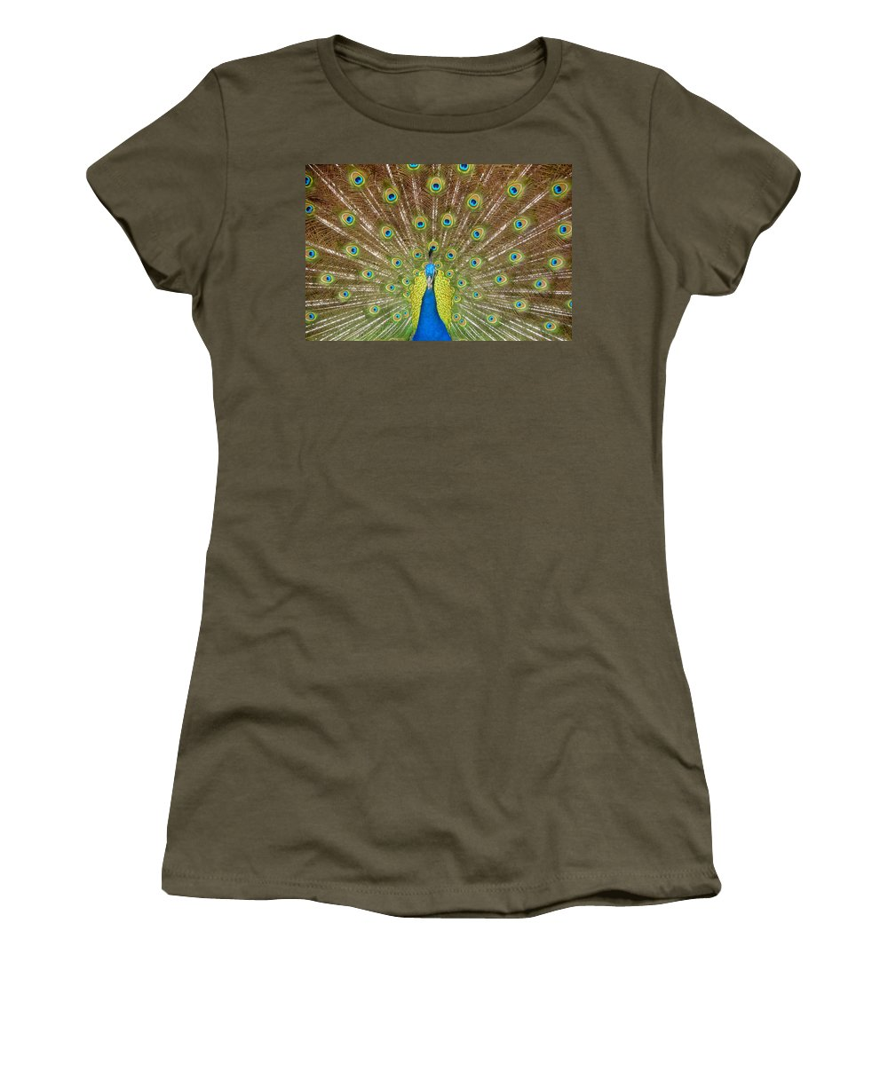 Peacock Women's T-Shirt featuring the photograph Peacock by David Lee Thompson