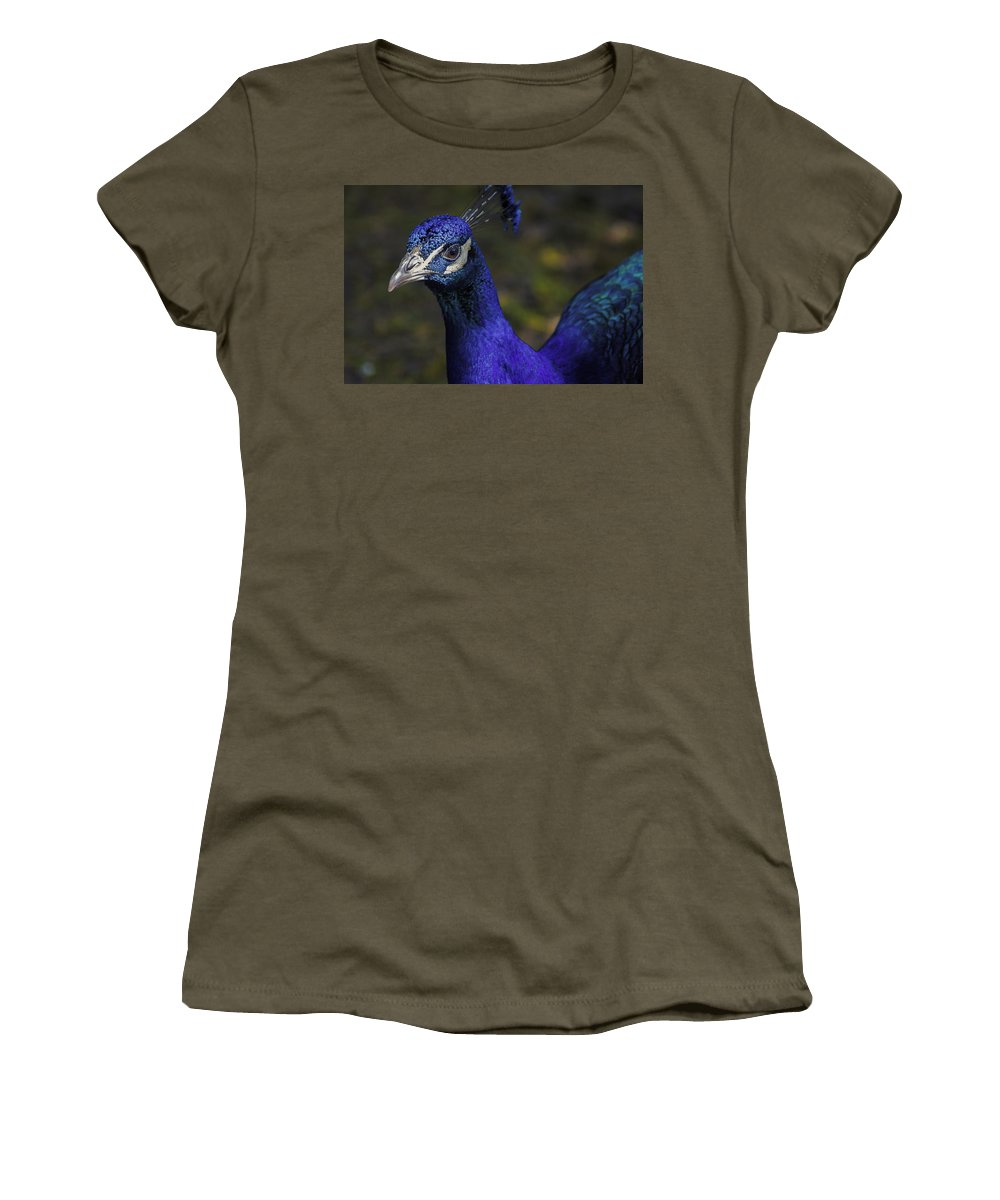 Peacock Women's T-Shirt featuring the photograph Peacock by Nolan Taylor
