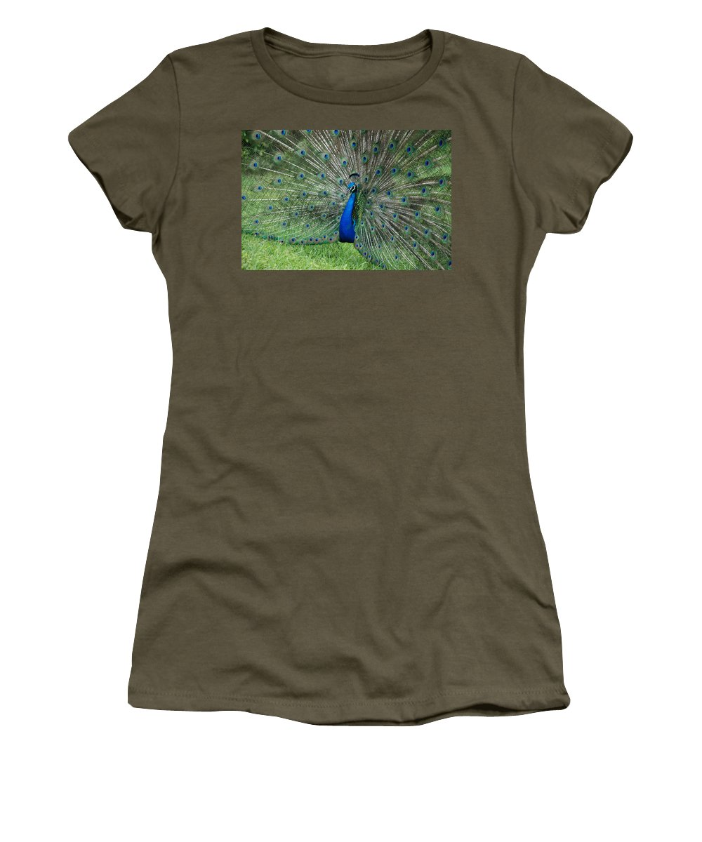 Peacock Women's T-Shirt (Athletic Fit) featuring the photograph Peacocks Glory by Rob Hans