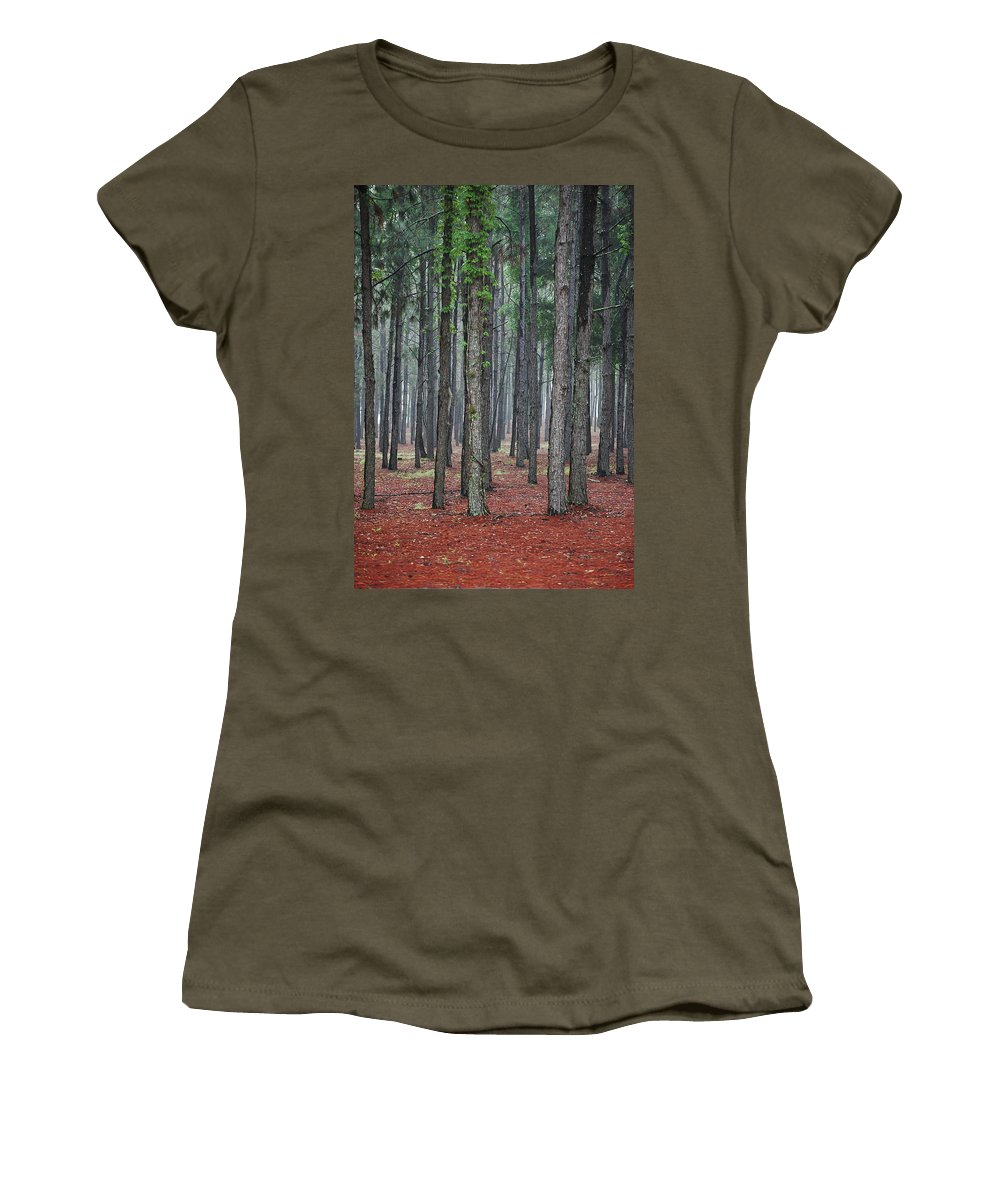 Pine Trees Women's T-Shirt featuring the photograph Pine Trees by Robert Meanor