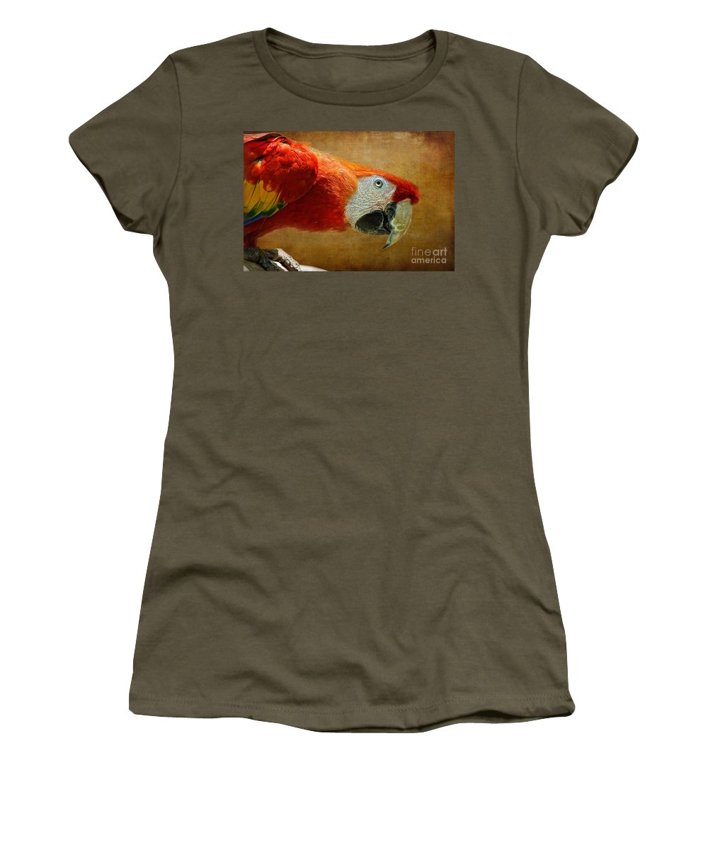 Parrot Women's T-Shirt featuring the photograph Pretty Boy by Lois Bryan