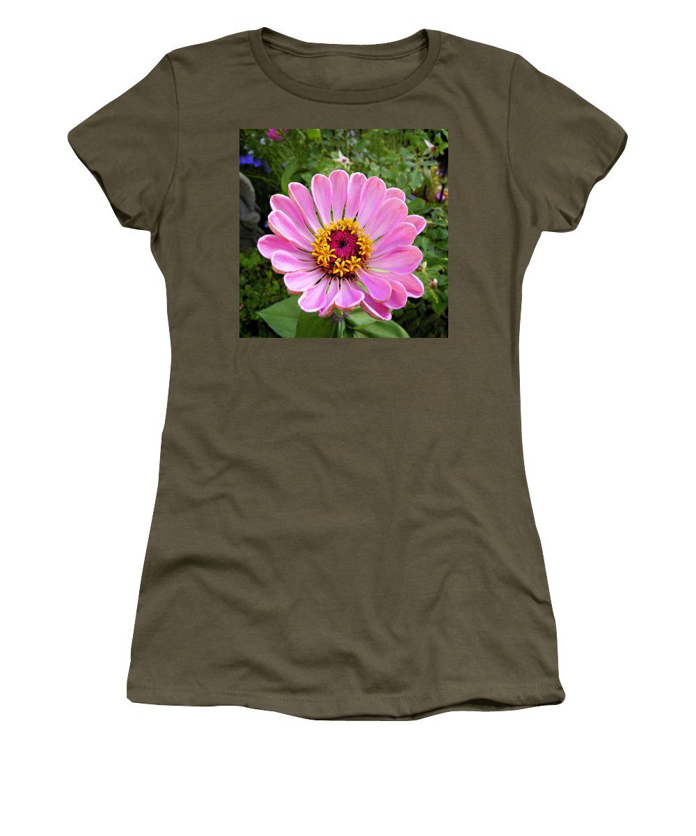 Flower Women's T-Shirt featuring the photograph Pretty In Pink Zinnia by Marilyn Hunt