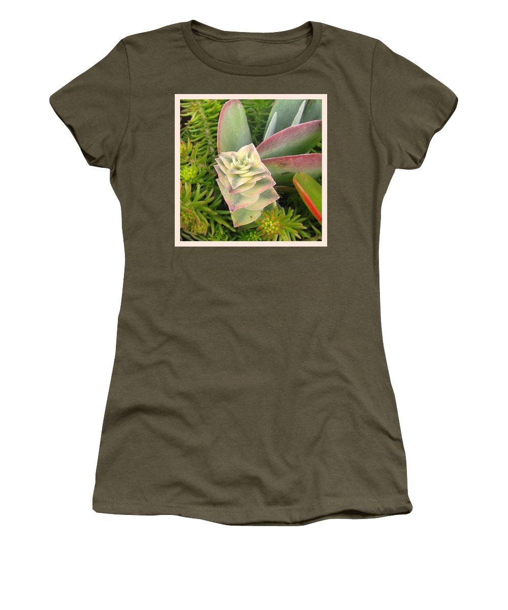 Angelandspot Women's T-Shirt featuring the photograph Pretty Succulents by Cassie Peters