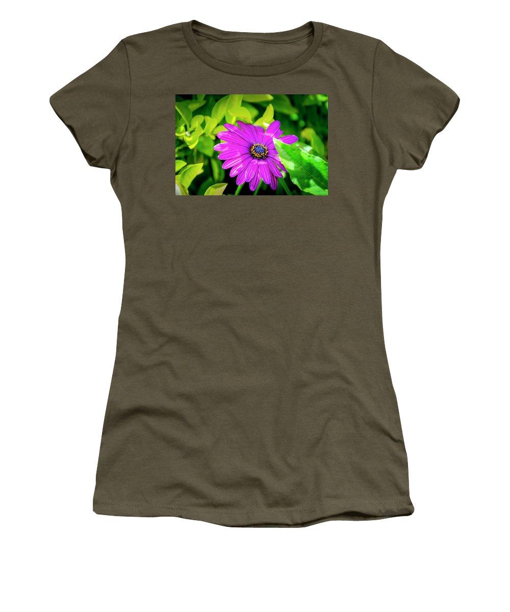 Flower Women's T-Shirt featuring the photograph Purple Flower by Daniel Murphy