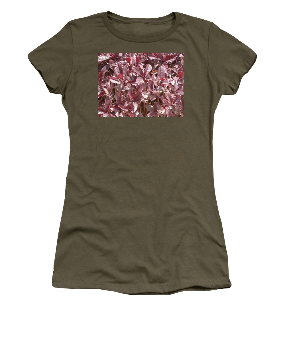 Purple Women's T-Shirt (Athletic Fit) featuring the photograph Purple Foliage by Usha Shantharam
