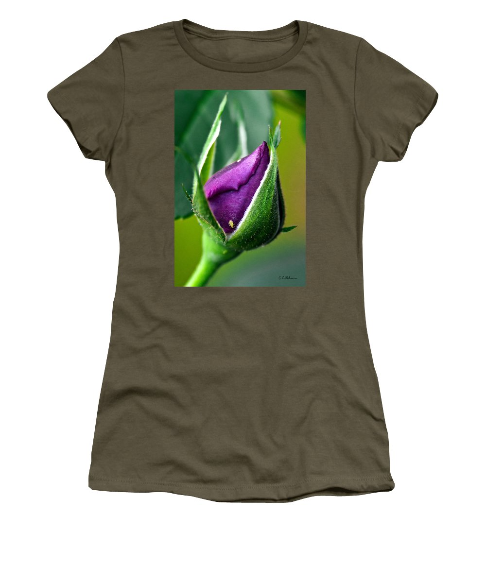 Rose Women's T-Shirt (Athletic Fit) featuring the photograph Purple Rose Bud by Christopher Holmes