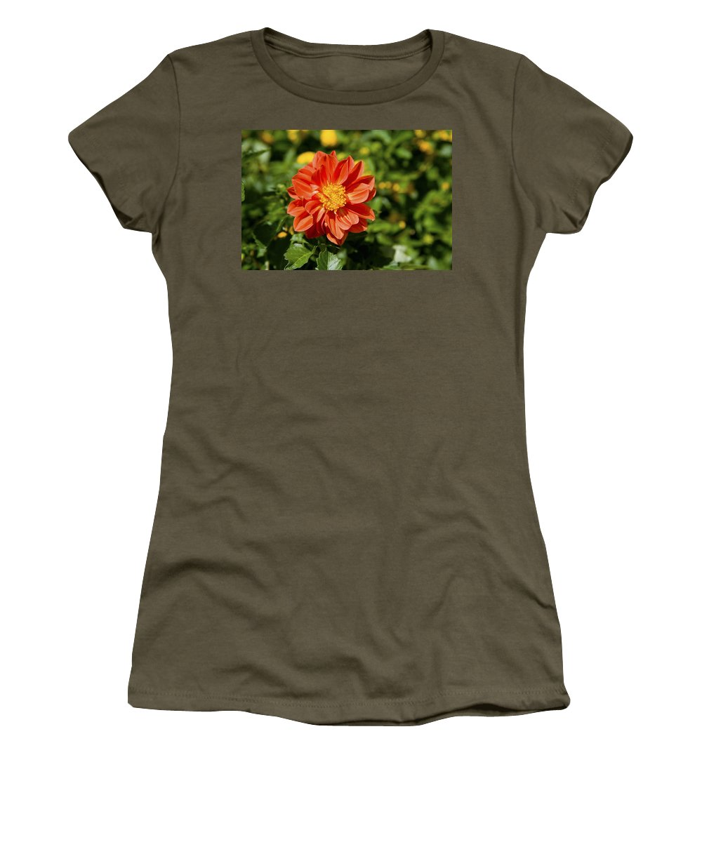 Open Centered Women's T-Shirt featuring the photograph Red Dahlia by Diane Macdonald