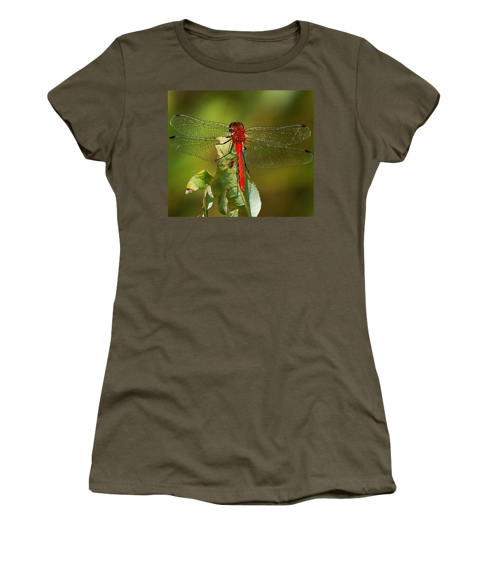 Digital Photograph Women's T-Shirt (Athletic Fit) featuring the photograph Red Dragon Fly by David Lane