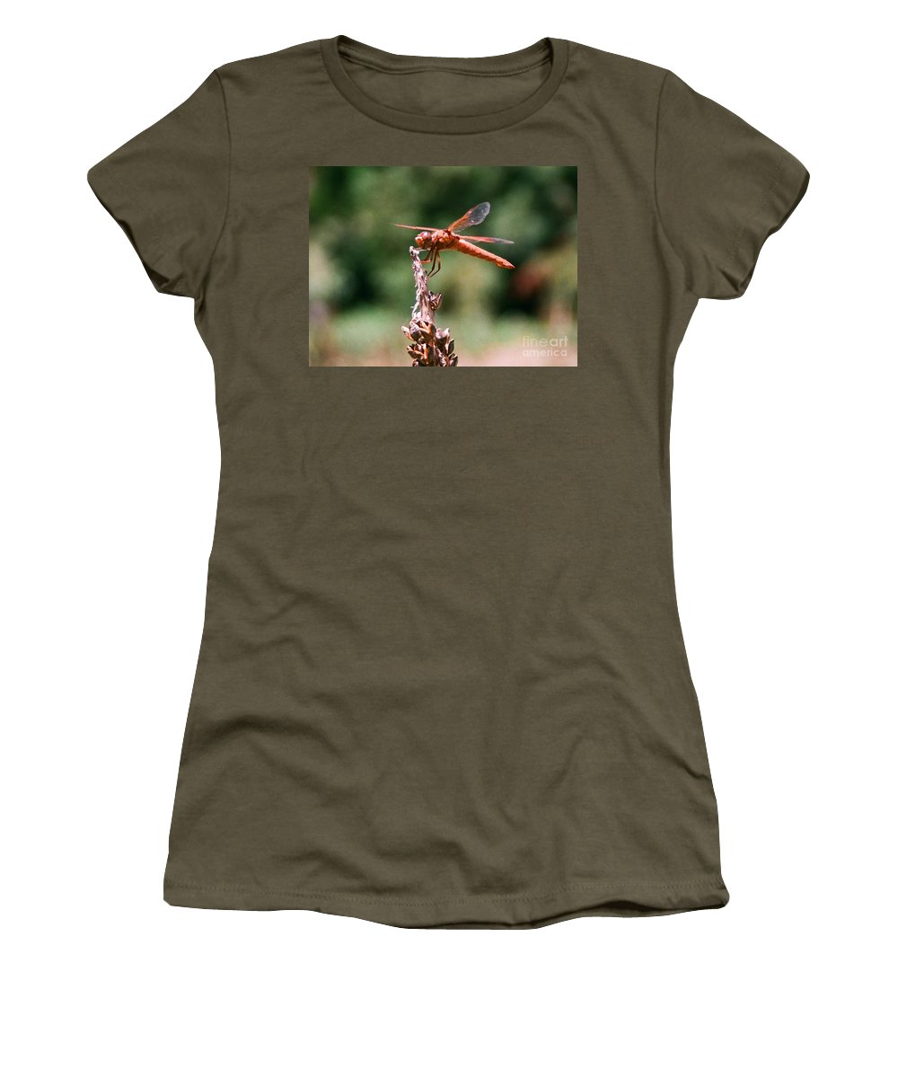 Dragonfly Women's T-Shirt featuring the photograph Red Dragonfly II by Dean Triolo
