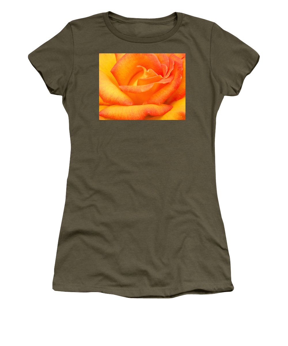 Rose Women's T-Shirt (Athletic Fit) featuring the photograph Red Gold Rose by Will Borden