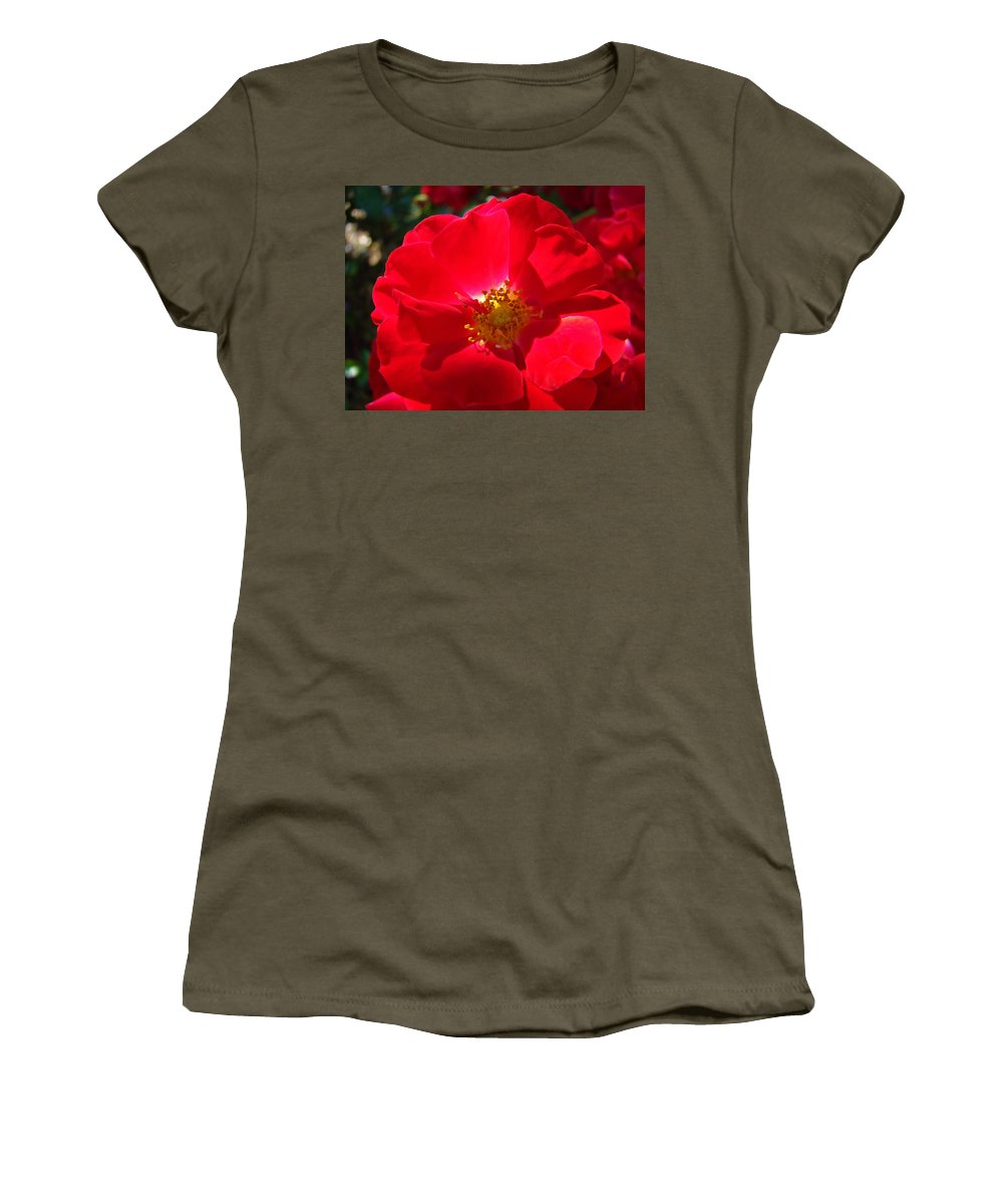 Rose Women's T-Shirt featuring the photograph Red Rose Art Print Sunlit Roses Botanical Giclee Baslee Troutman by Baslee Troutman