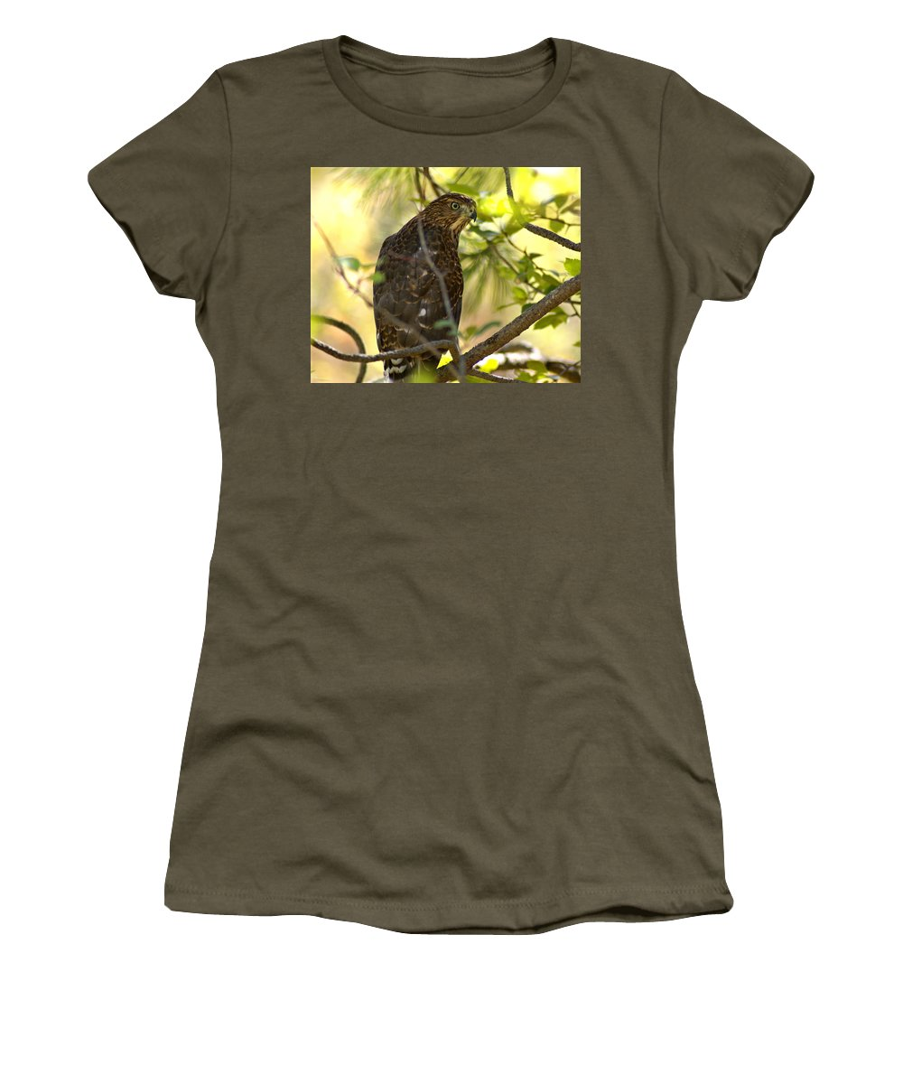 Spokane Women's T-Shirt featuring the photograph Red-tailed Hawk by Ben Upham III