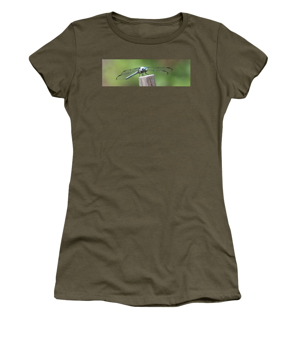 Dragonfly Women's T-Shirt featuring the photograph Resting Dragonfly by Mark StJohn