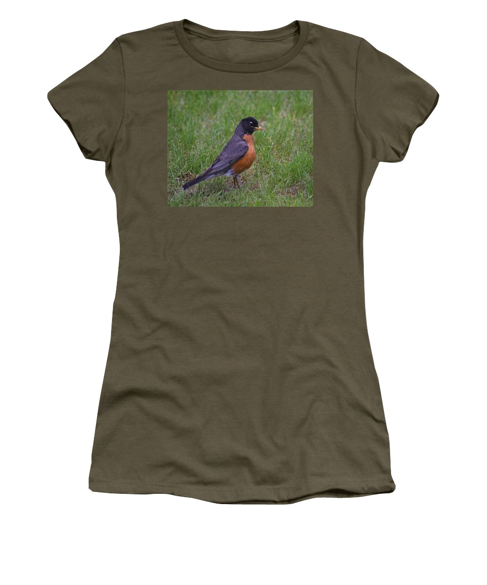 Birds Women's T-Shirt featuring the photograph Robin On The Lawn by Ben Upham III