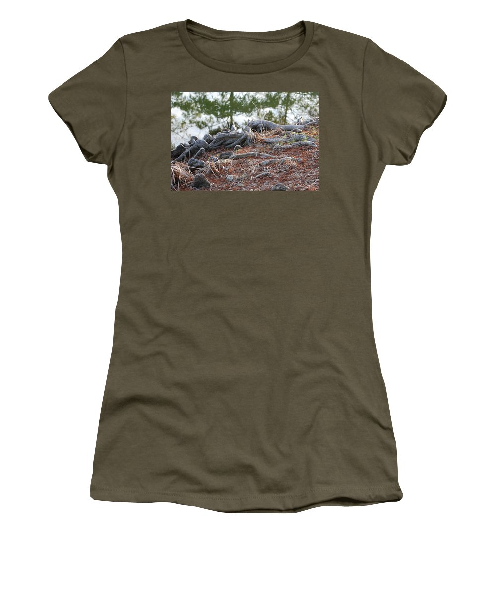 Roots Women's T-Shirt (Athletic Fit) featuring the photograph Rooted Lake Edge by Rob Hans