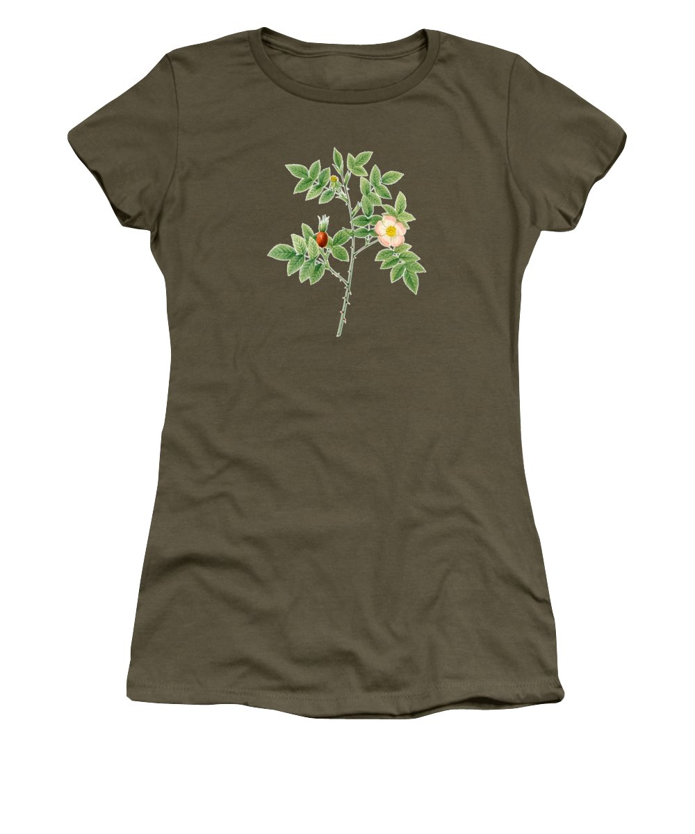 Rose Women's T-Shirt featuring the painting Rose107 by The one eyed Raven