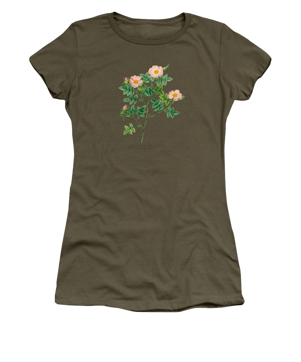 Rose Women's T-Shirt featuring the painting Rose132 by The one eyed Raven