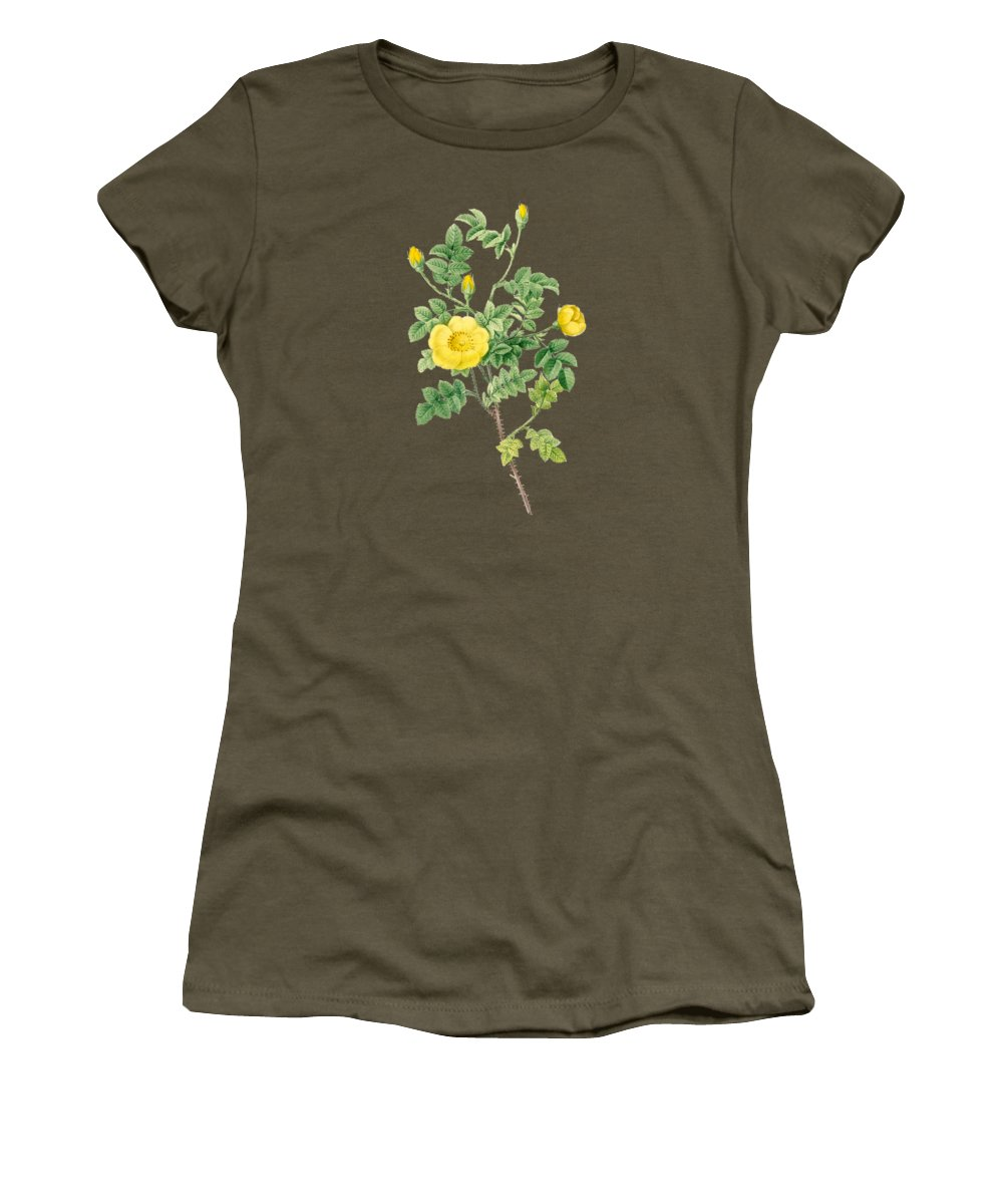 Rose Women's T-Shirt featuring the painting Rose86 by The one eyed Raven
