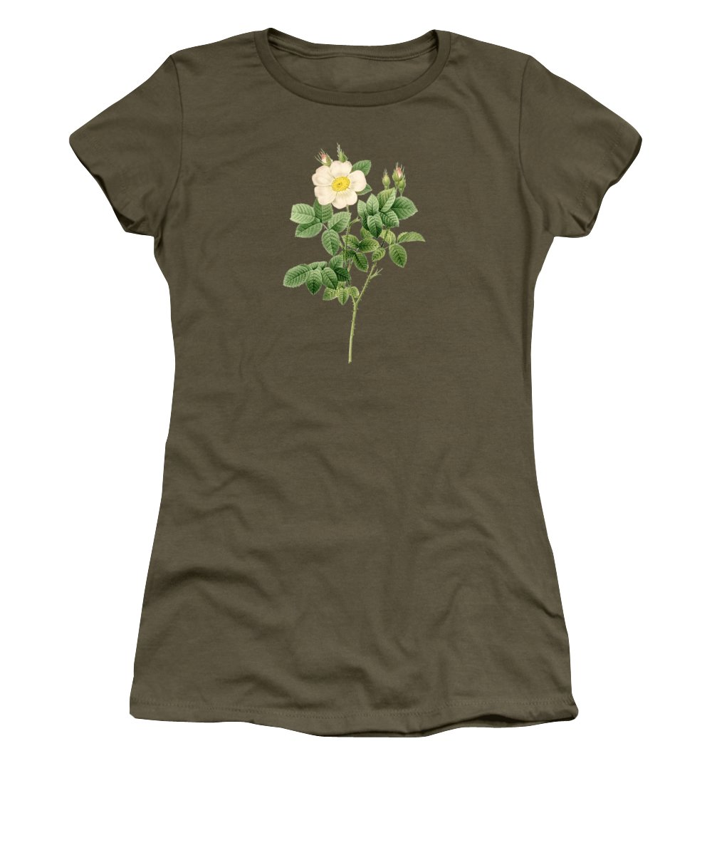 Rose Women's T-Shirt featuring the painting Rose91 by The one eyed Raven
